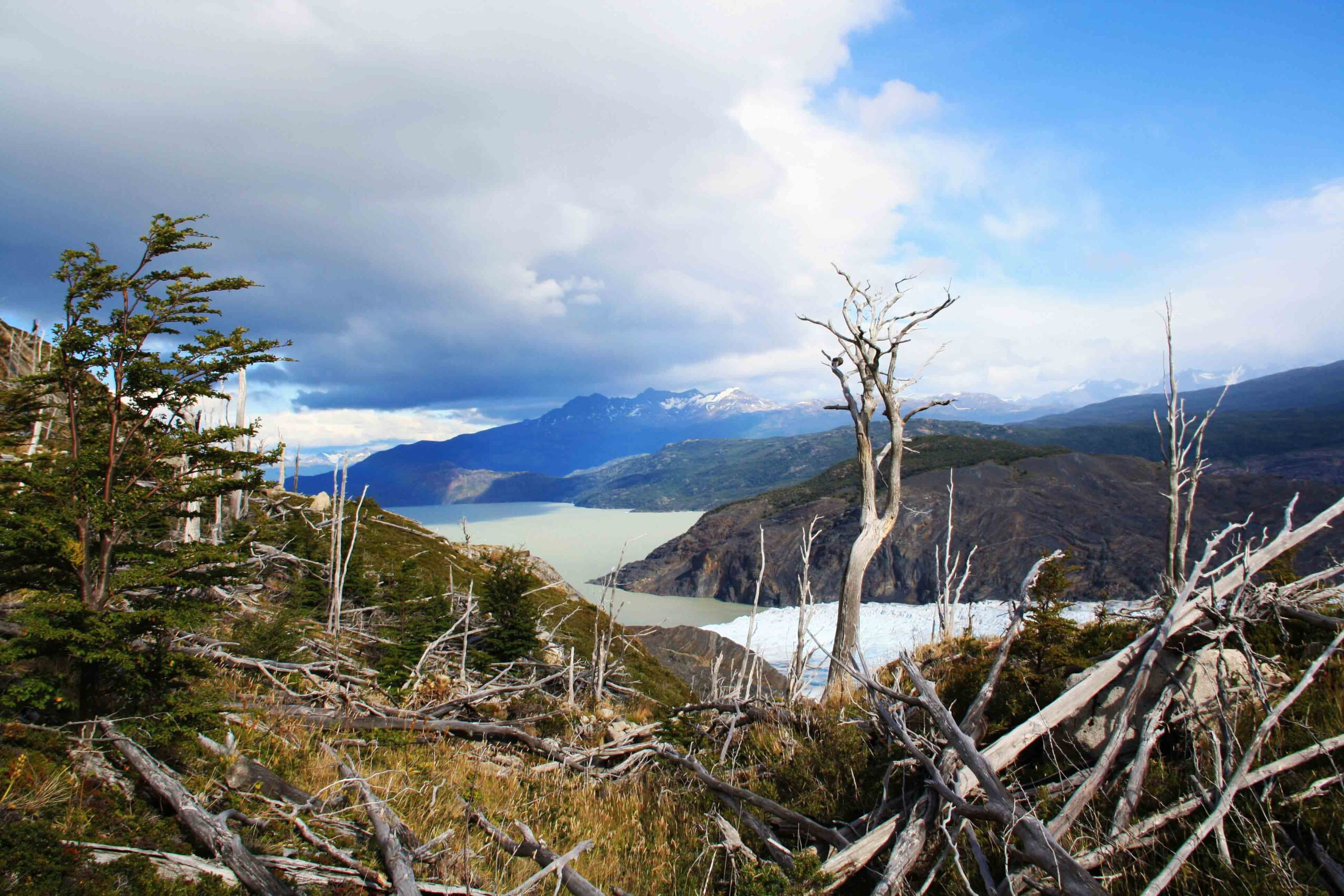 burned forrest and glacier lake