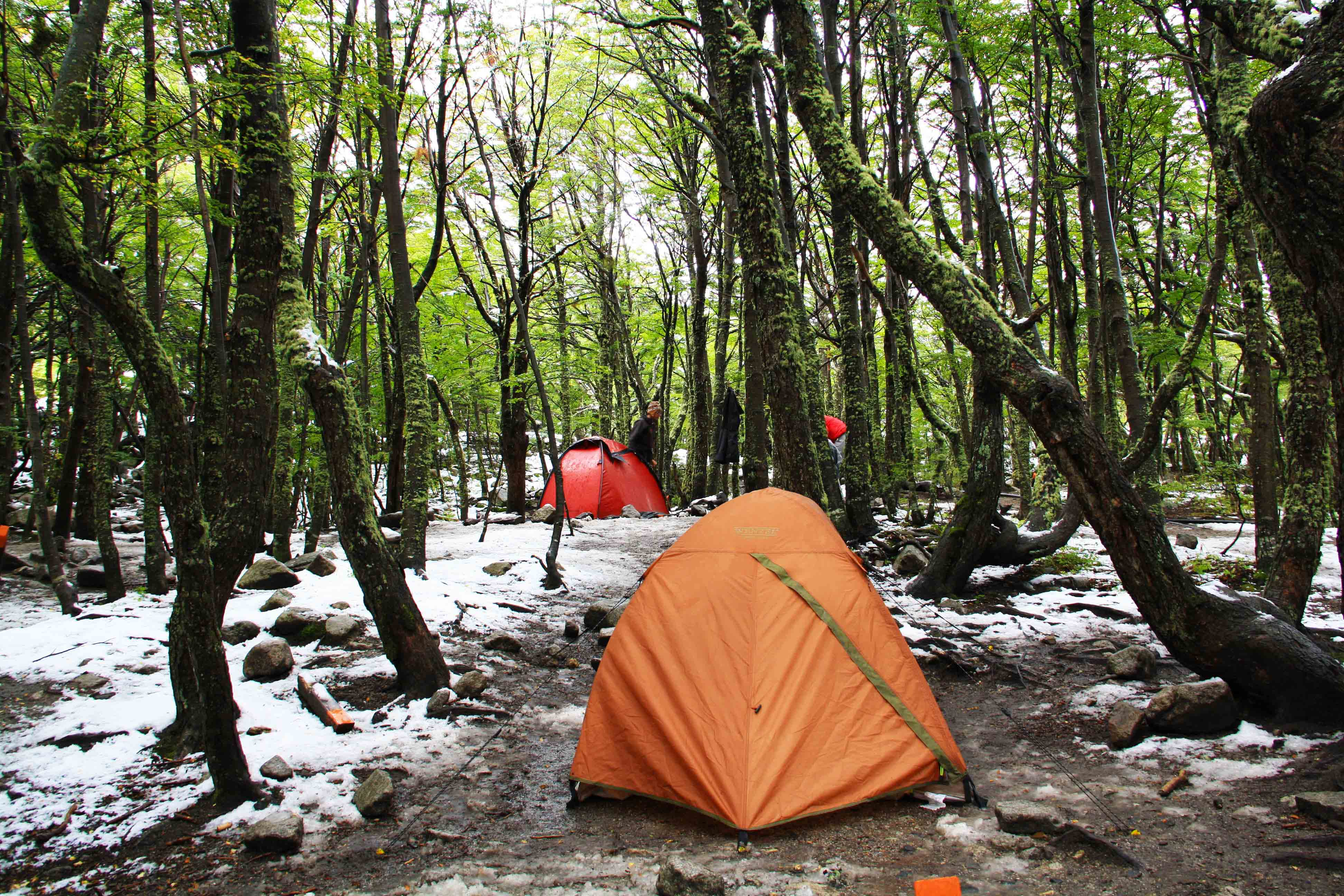 camping in forrest snow
