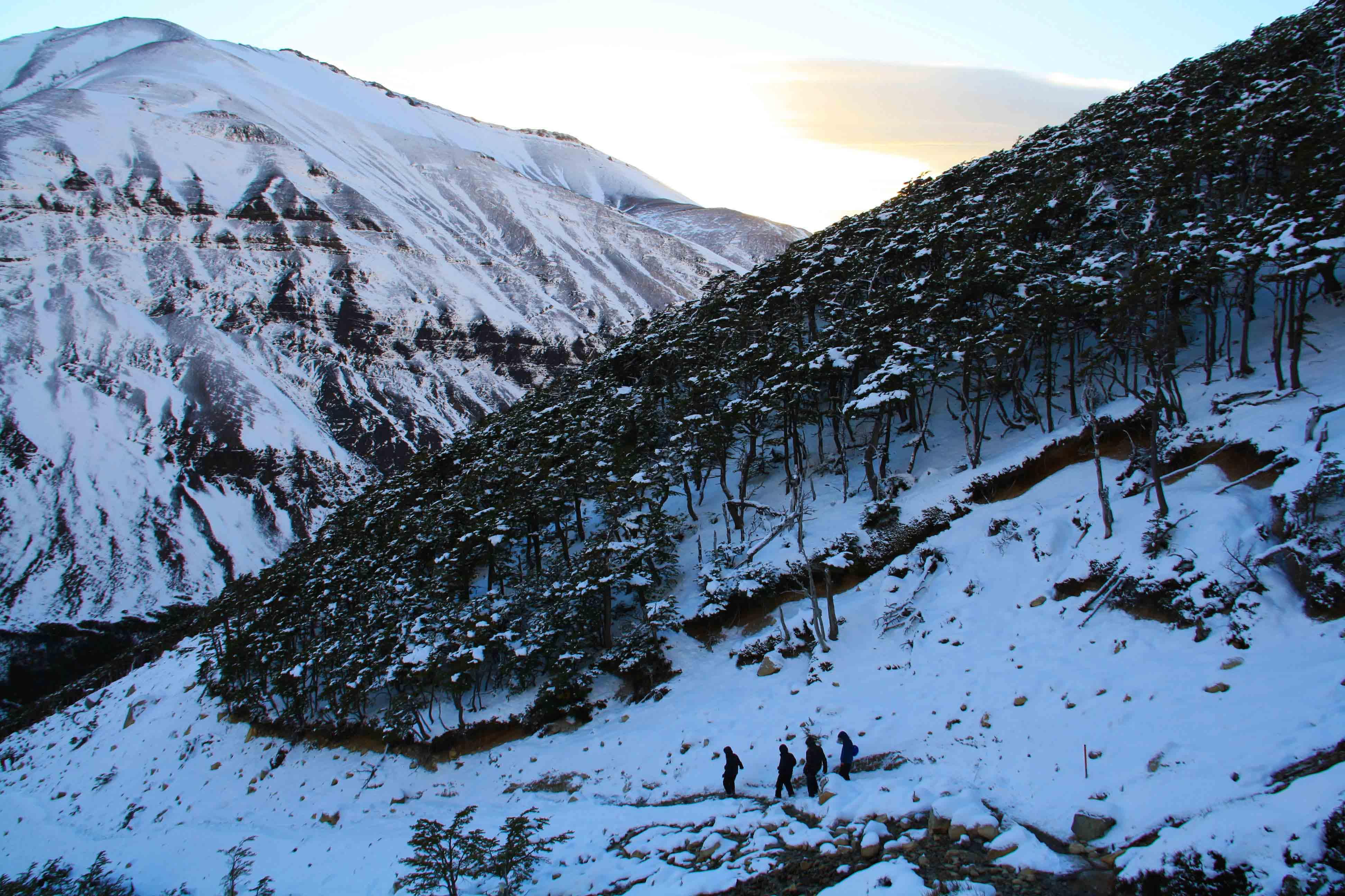 snow trekking torres del paine