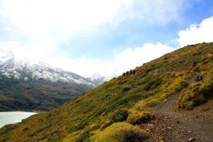 trekking torres del paine in Chile