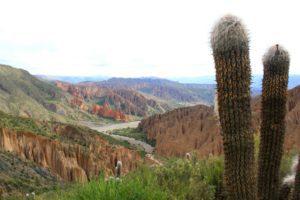 Coloured mountains and cactus in Tupiza Bolivia