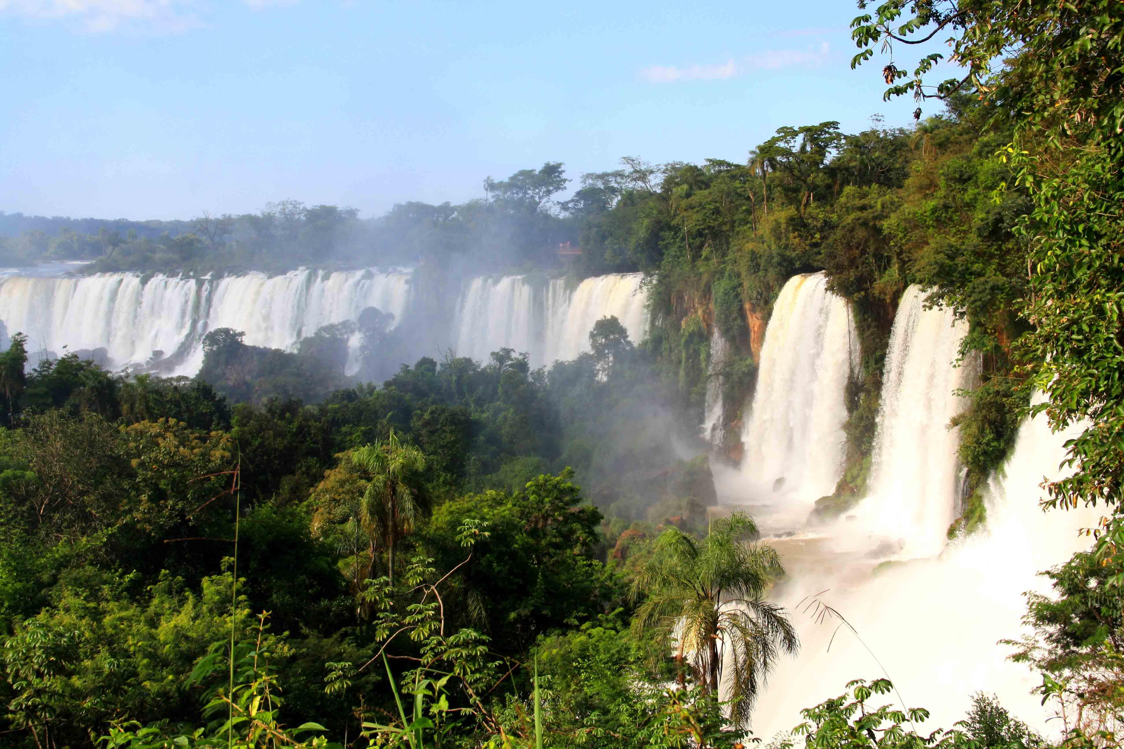 jungle_forest_iguazu_falls