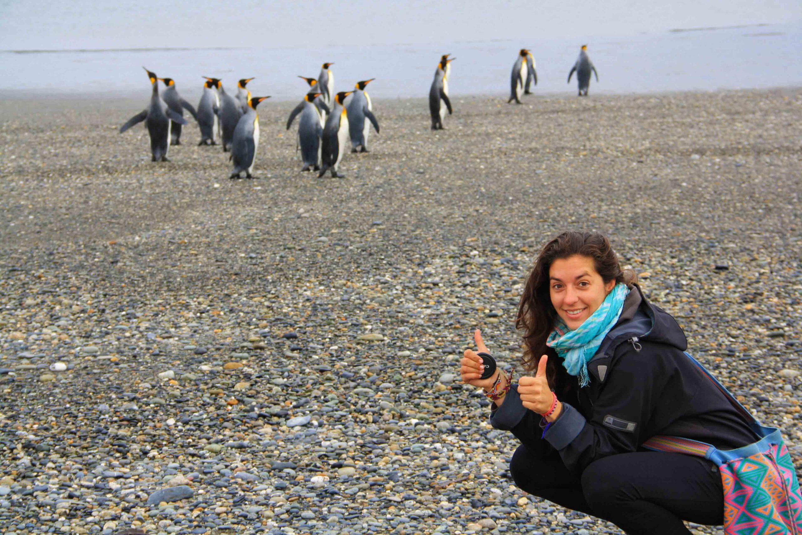 Pinguins at Porvenir Beach in Argentina