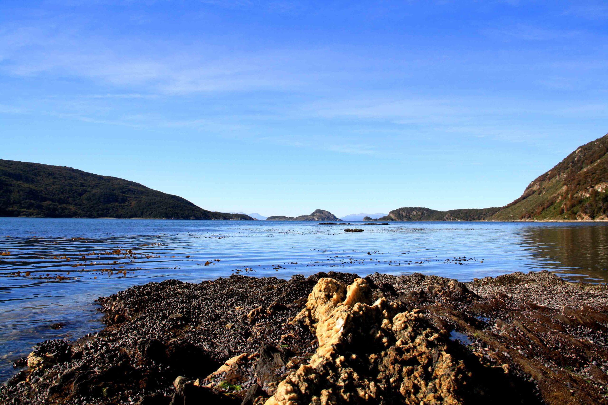 tierra del fuego lake seashells