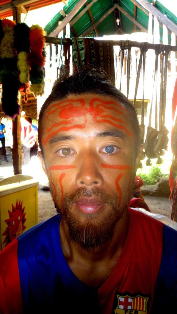 inca art face paint with fruit