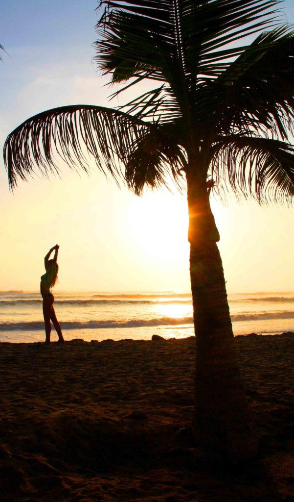 sunset palmtree waves peru