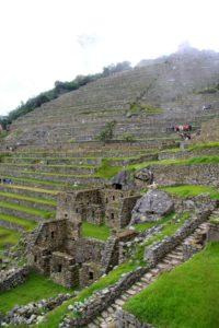 Terraces of Machu Picchu in Peru