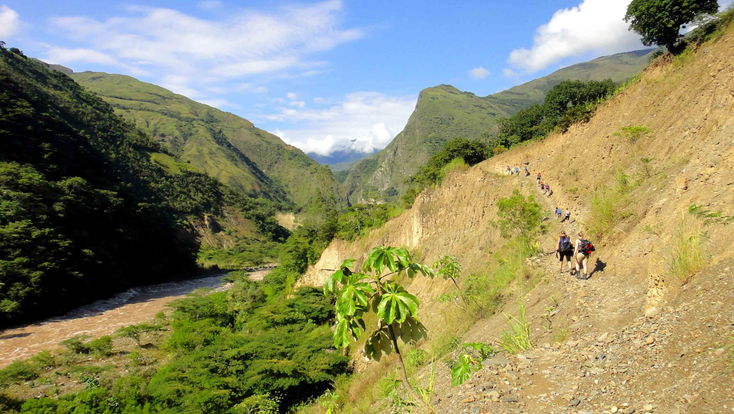 trekking inca jungle trail view