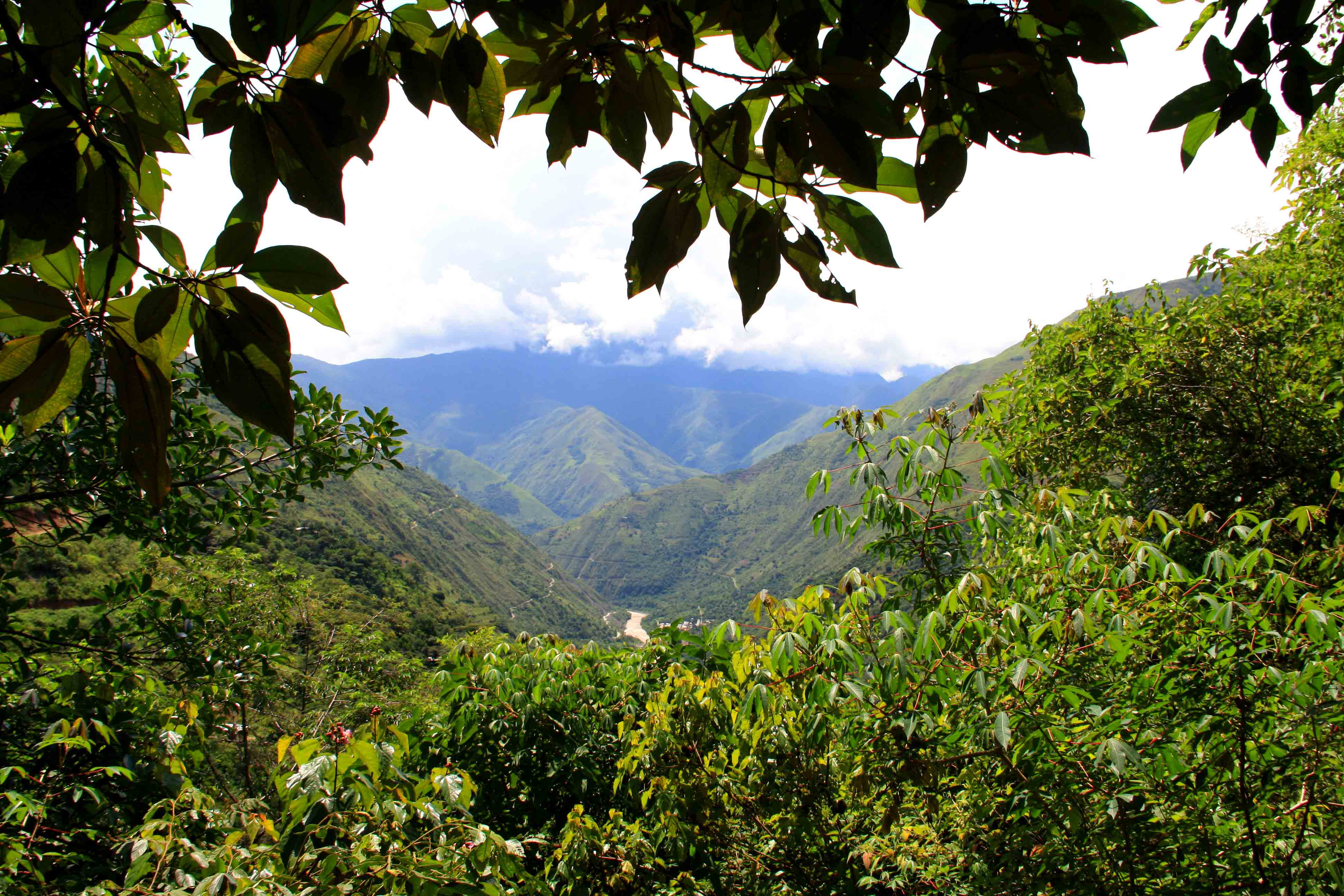 inca jungle trail view