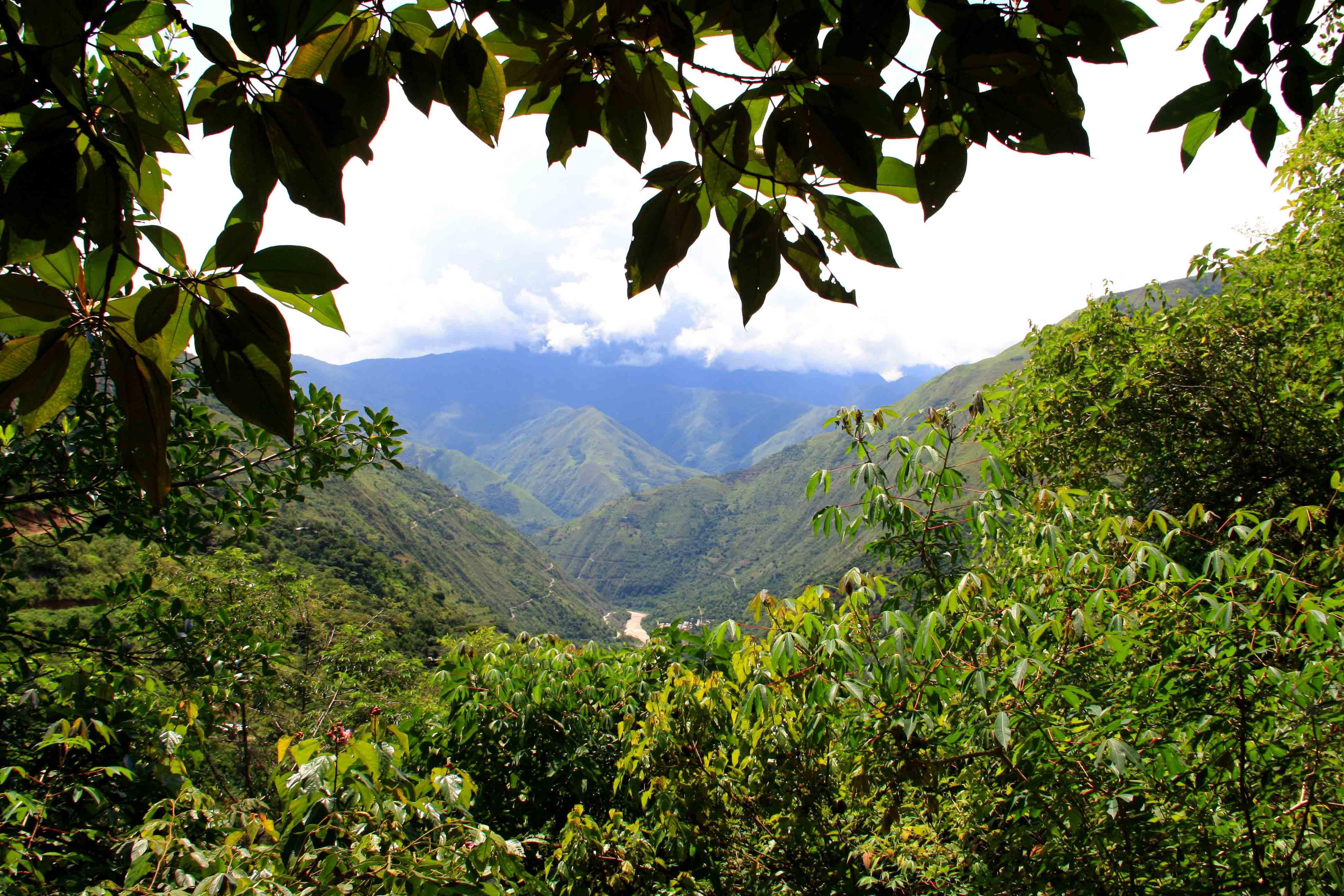 inca jungle trail view