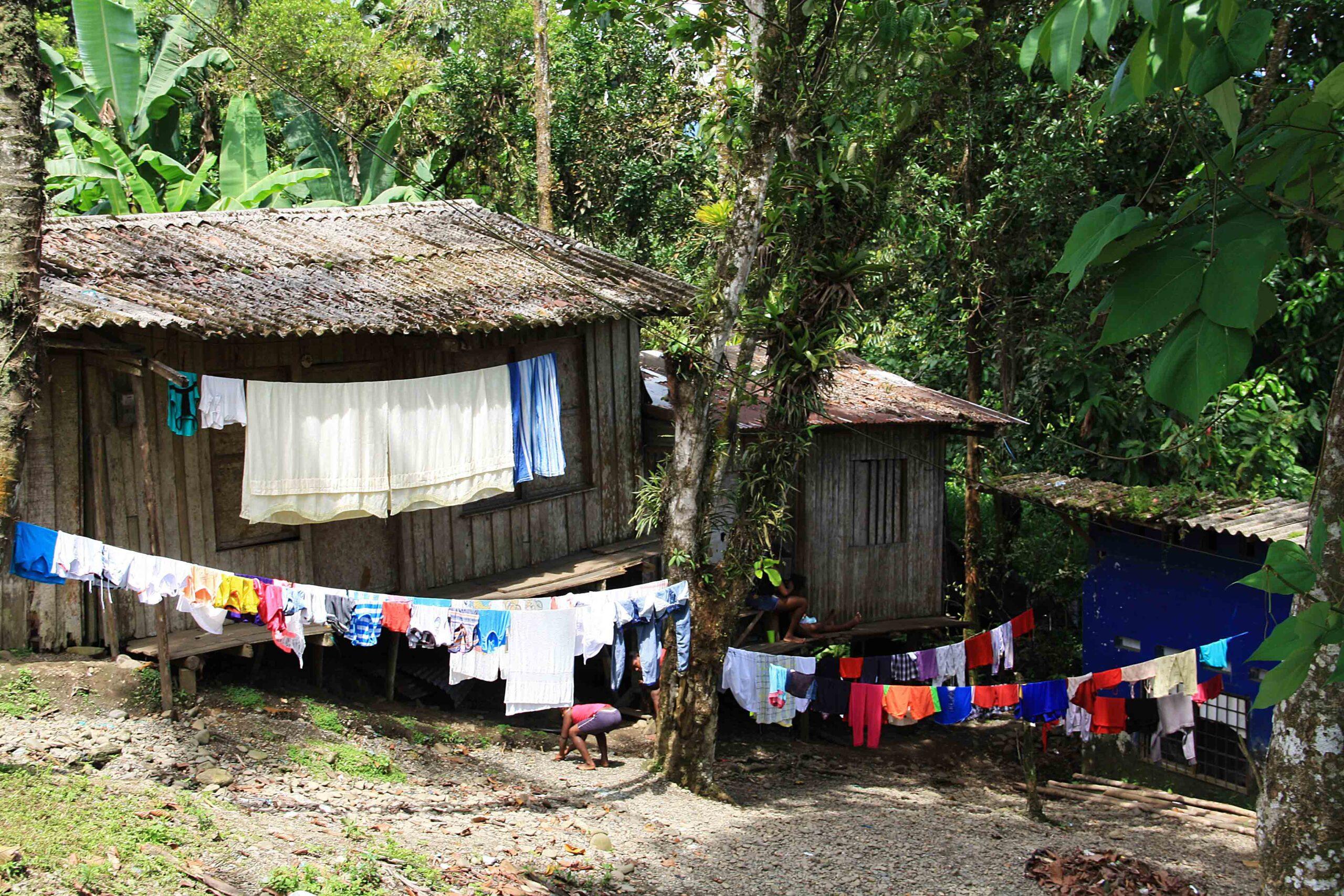 jungle house san cirpriano