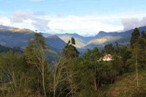 coffee region view salento