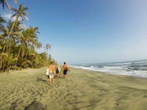 surf destination costeno beach palmtrees colombia