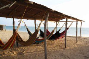 sleeping in hammocks on the beach