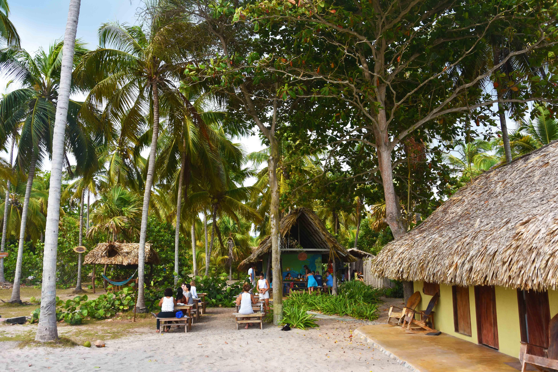 La sirena restaurant beach Palomino