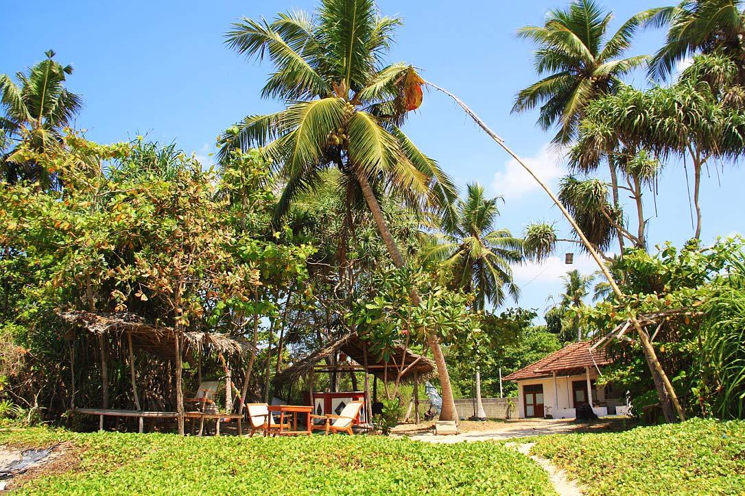 Talalla beach bungalows garden sri lanka