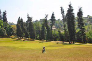 botanical gardens kandy sri lanka
