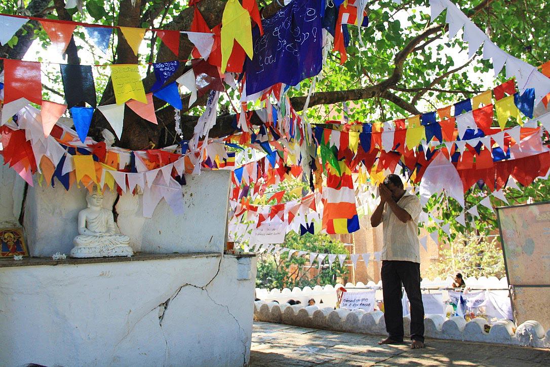 flags praying buddhism natha devale kandy sri lanka