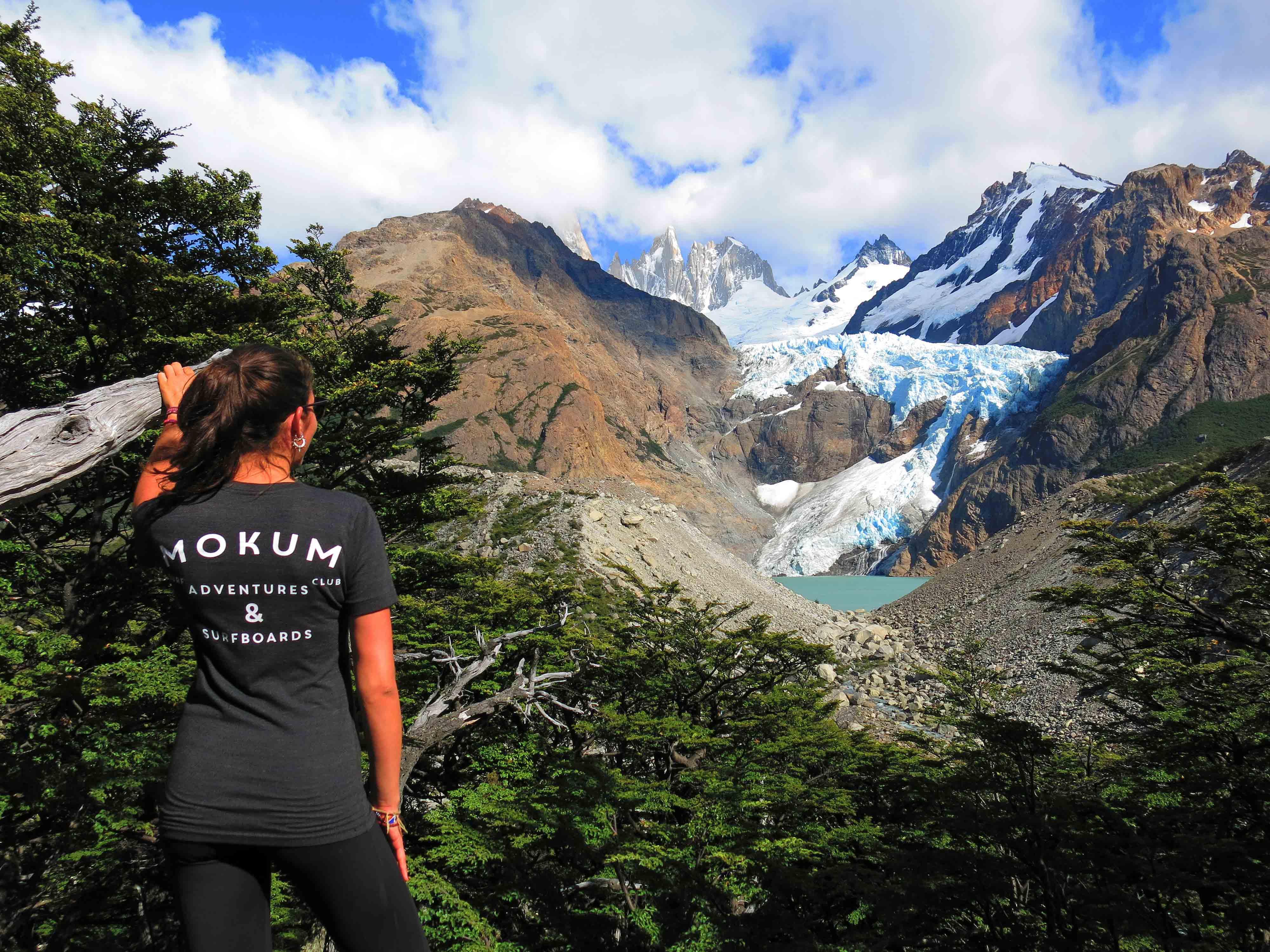 mount fitzroy el chalten argentina south america