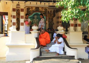 praying nun woman buddhisme temple vishnu devale kandy sri lanka