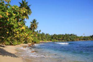 beach view hiriketiya bay sri lanka