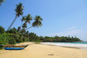 palmtrees dickwella beach boats view sri lanka