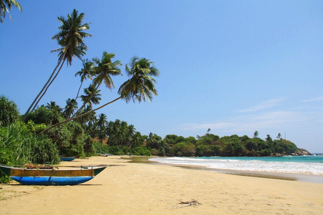 palmtrees dickwella beach boats view sri lanka