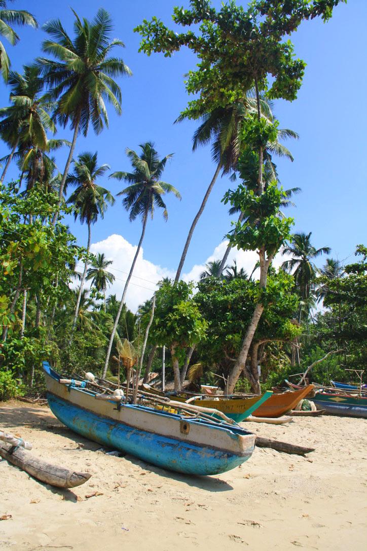 fishermen boat hiriketiya bay beach sri lanka