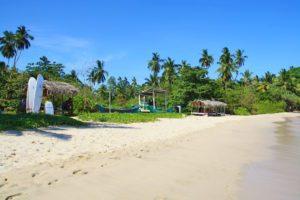 hiriketiya surf beach view palmtrees sri lanka