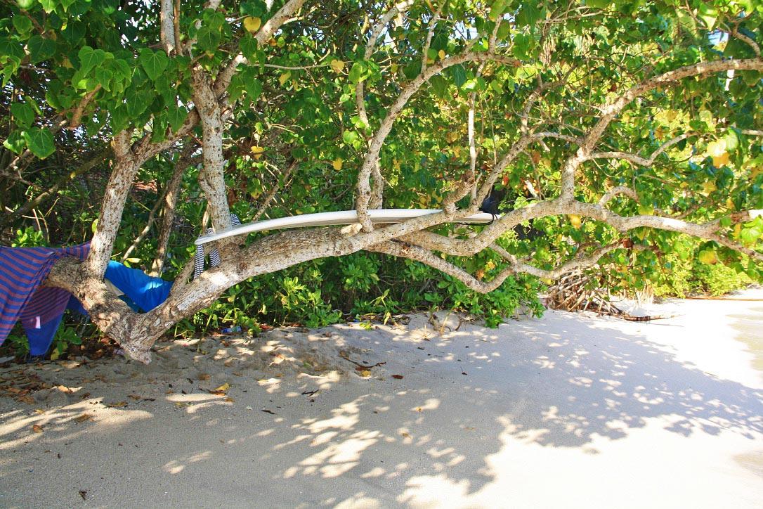 surfboard hiriketiya beach sri lanka