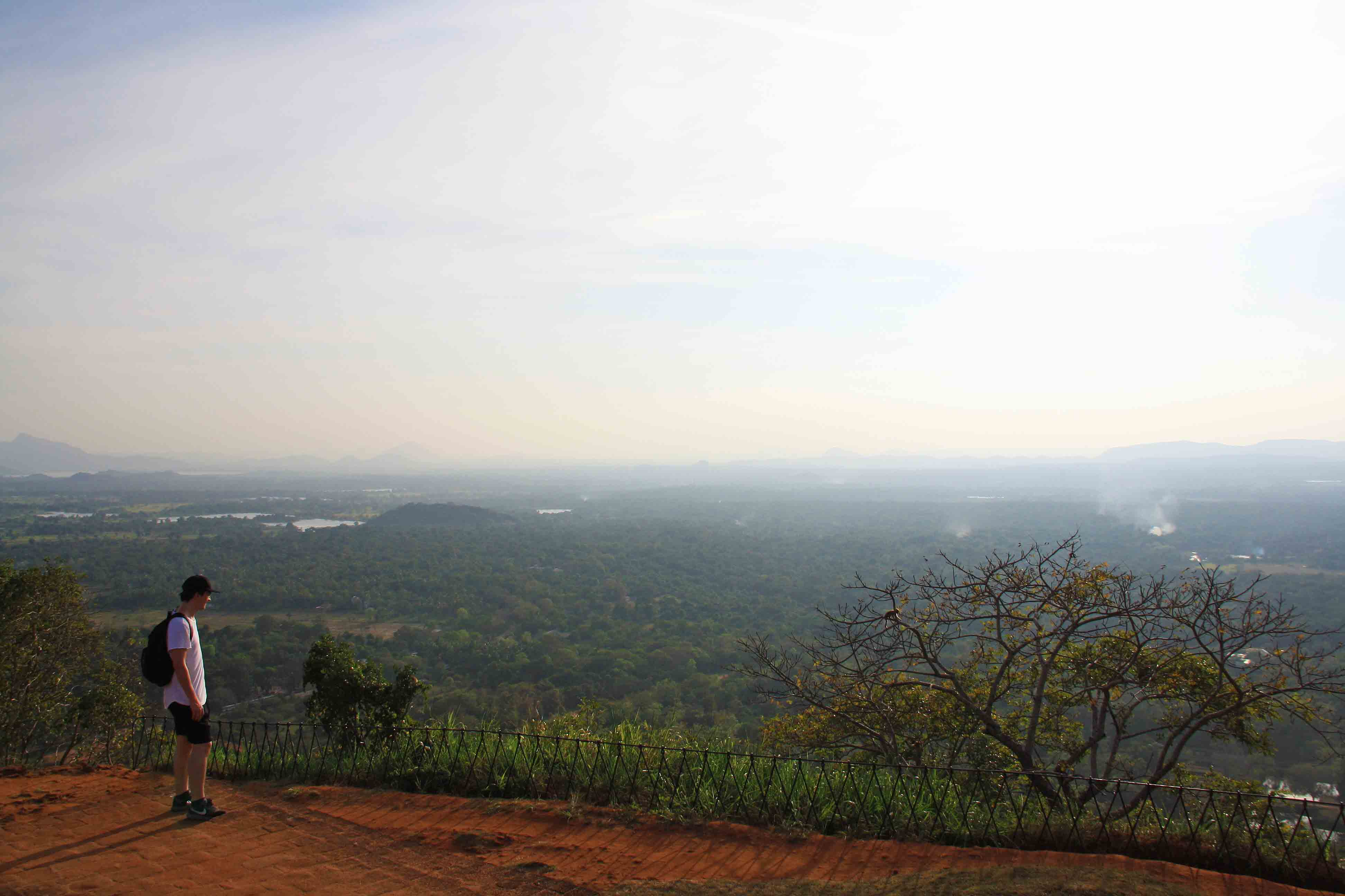 sigiriya view rock nature sri lanka