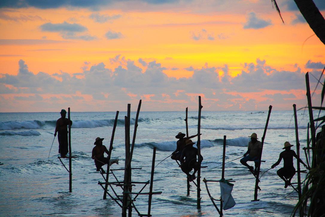 ahangama stilt fishermen sticks sri lanka