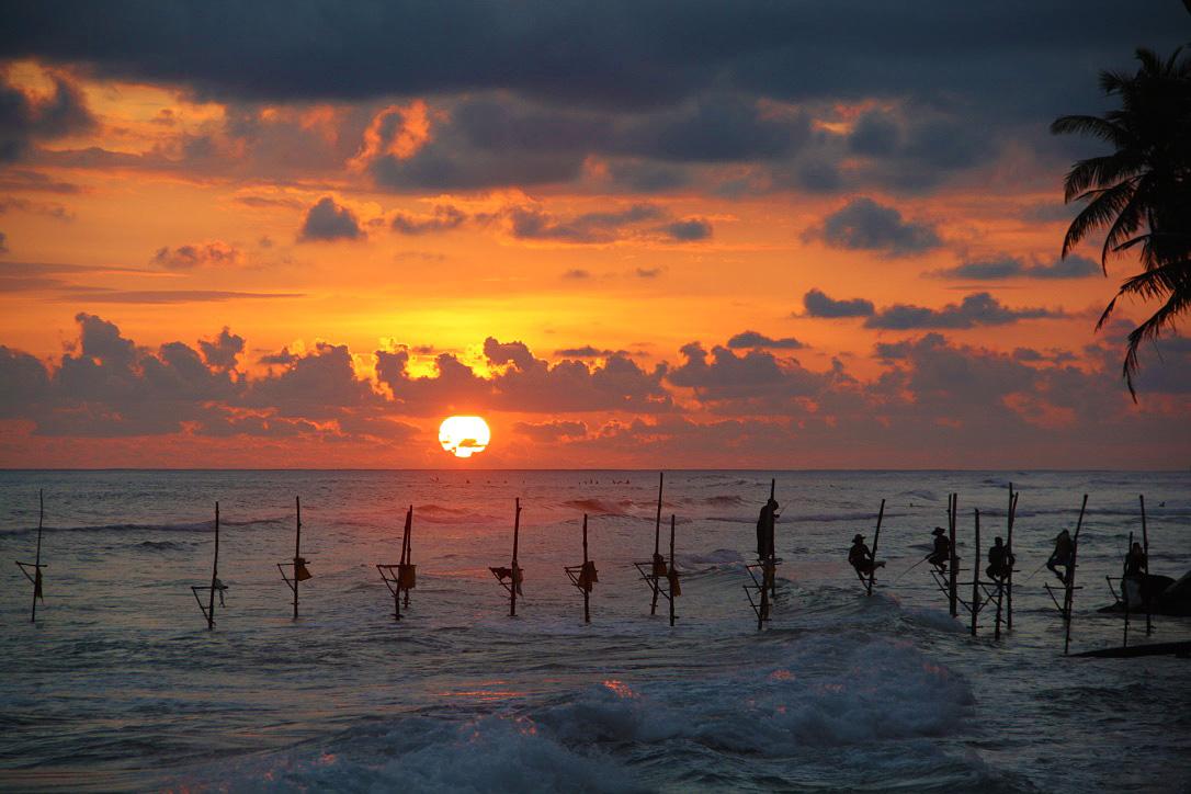 stilt fishermen sunset palmtrees ahangama sri lanka