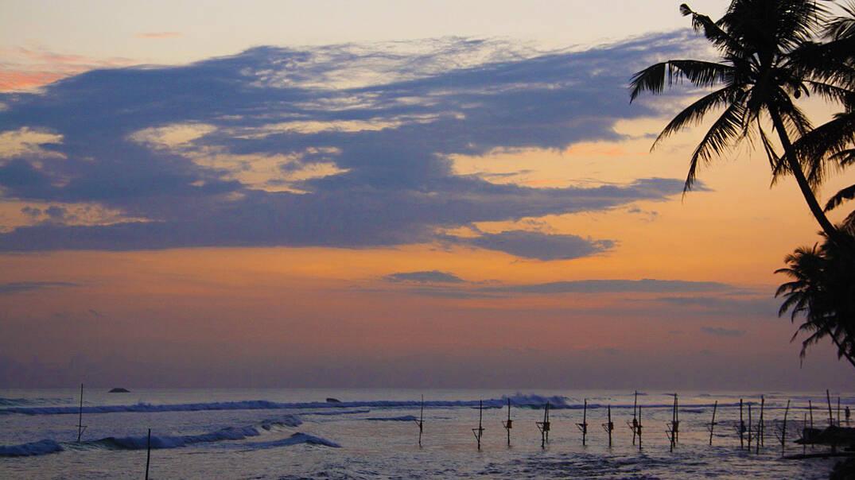 sunset view palmtrees stilt fishermen paradise surfing ahangama sri lanka