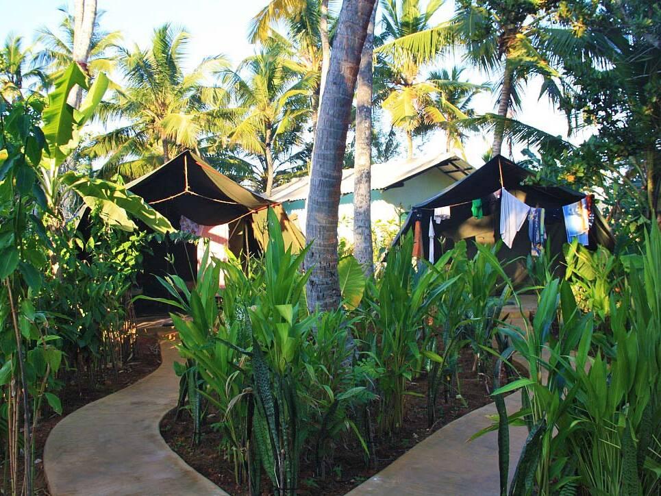 surf camp poe accommodation jungle ahangama sri lanka