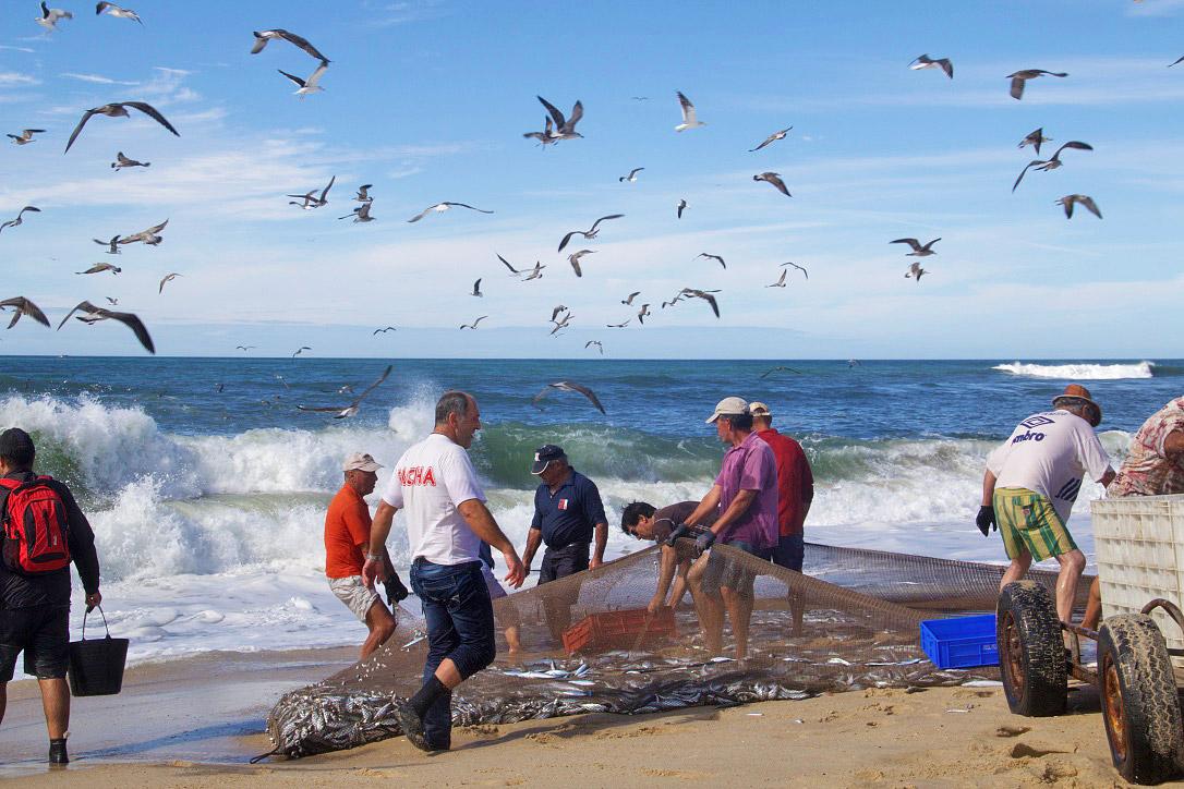 fishermen praia da tocha beach portugal