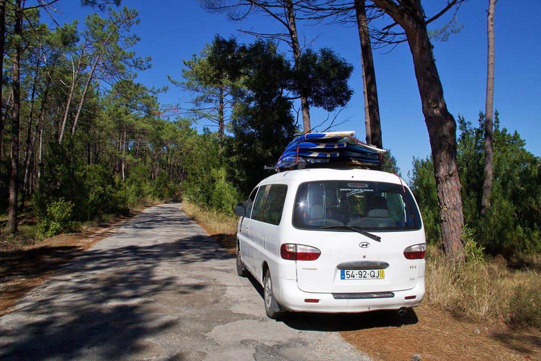 pine woods surftrip serra boa viagem portugal