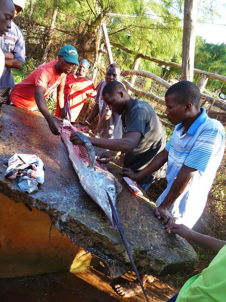 fishermen marlin locals ponta do ouro mozambique