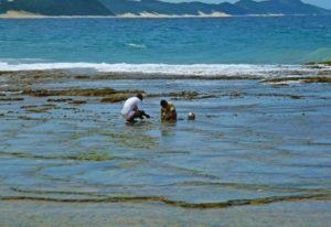 ponta do ouro mozambique fishermen ocean beach