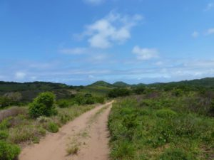 roadtrip in Mozambique Ponta do Ouro