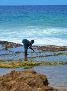 woman fishing ocean ponta do ouro mozambique
