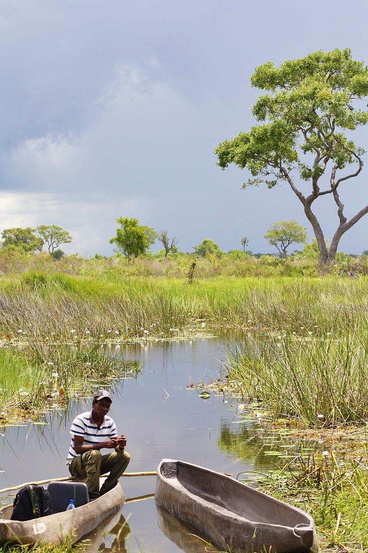 mokoro boat okavango delta botswana