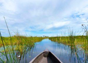 okavango delta botswana mokoro boat trip
