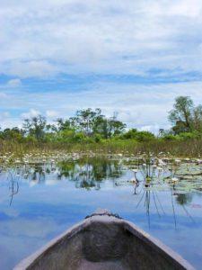 okavango delta mokoro trip botswana