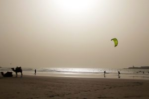 beach essaouira camels kitesurfing karma surf retreat