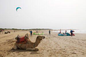 beach kitesurfing windsurfing karma surf retreat essaouira