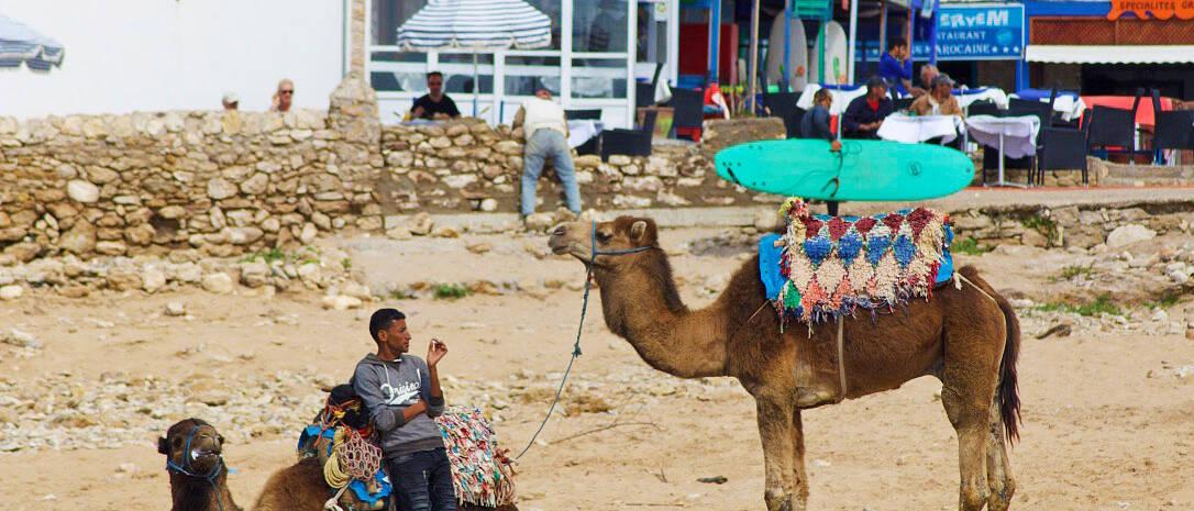 beach sidi kaouki karma surf retreat morocco