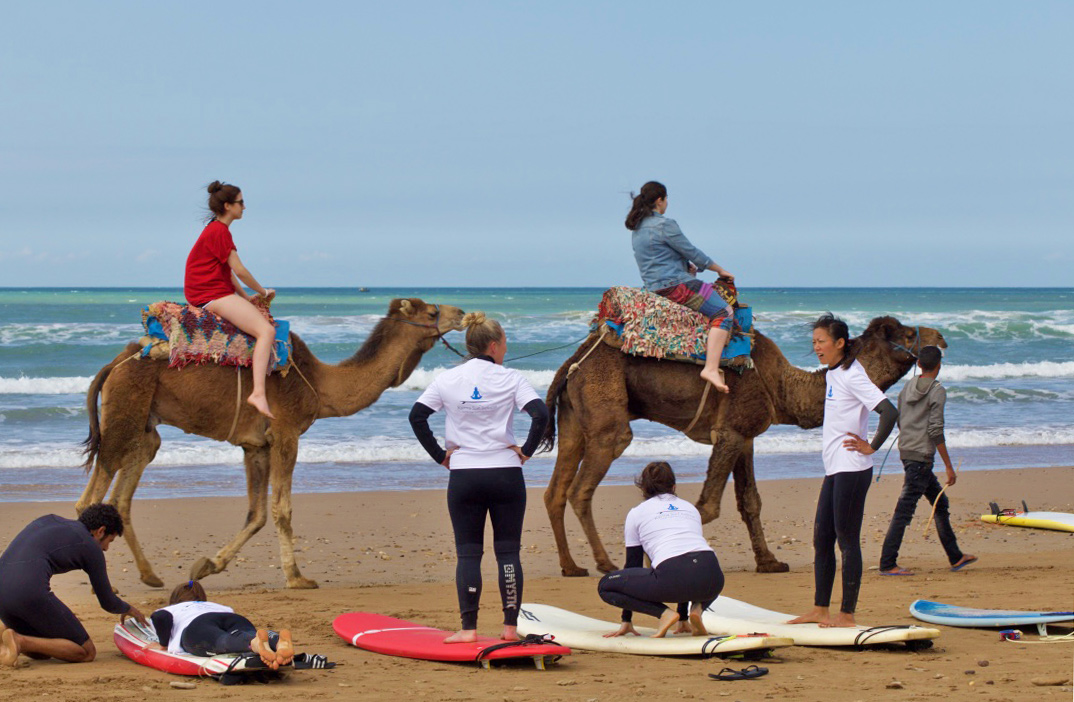 camels beach sidi kaouki surfing lesson karma retreat