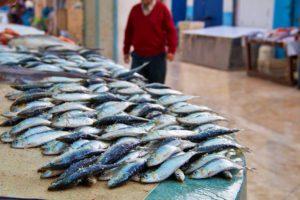 fish market essaouira karma surf retreta