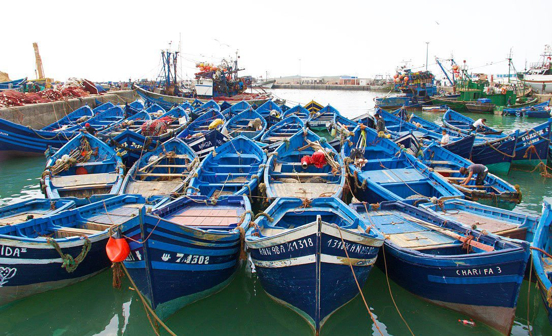 fishing boat essaouira karma surf retreat